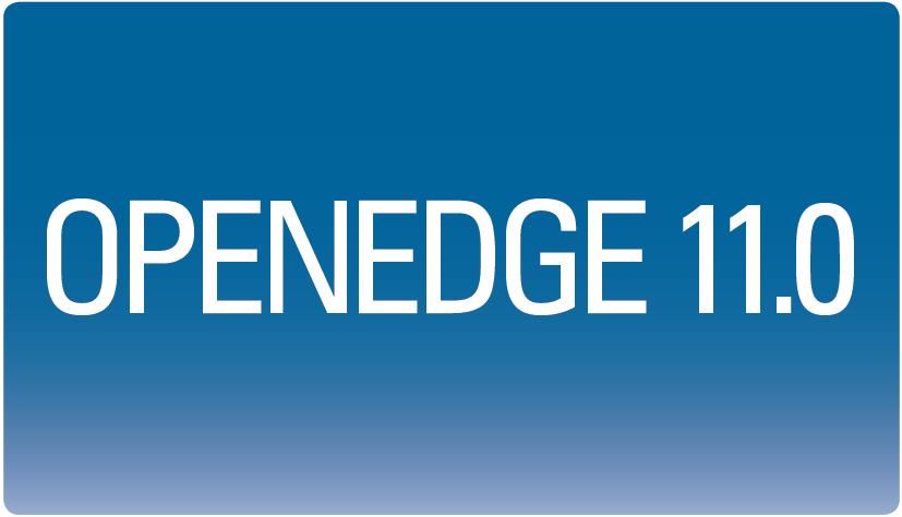 OpenEdge 11.0